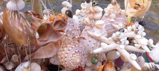 """主要是各种椰子糖果、椰片糖、椰计粉、椰花、椰角、椰糯糕、椰香酥饼、椰子卷和椰子酱等。 岛服  海南岛岛服是海南的自然风光与人类自身相亲相融的一种外在表现形式。身着布满椰枝、红土、贝壳、珊瑚图案的服装,体验和浸染着这块热土的文化精神与情愫。亚龙湾、蝴蝶谷、南山、大小洞天、天涯海角等景点都能买到。 热带水果  杨桃、木瓜、芒果、菠萝蜜、红毛丹、火龙果,这些热带水果可以在市区红旗街第一农贸市场、胜利路的鸿港市场购买。 珊瑚盆景  珊瑚盆景是海中奇葩,产于热带海洋,人称""""海石花""""。其实,它"""