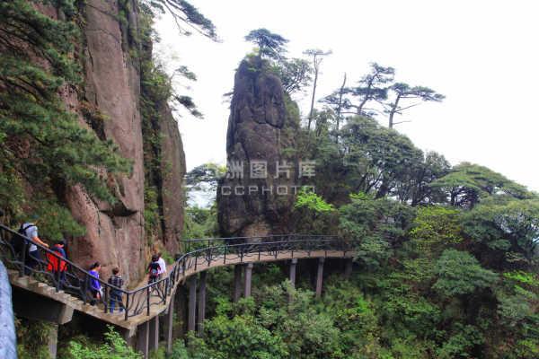 江西旅游线路以婺源,景德镇,庐山,井冈山,三清山为主要游览景点.